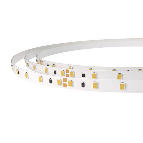 TIRA LED 24V 4,8W 60 LED/MTS - IP20- 3200K